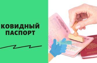 Как получить сертификат о вакцинации от коронавируса