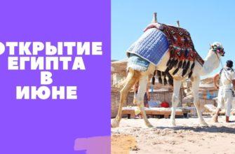 Открытие Египта в июне